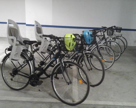 Bicycle Hire for Free
